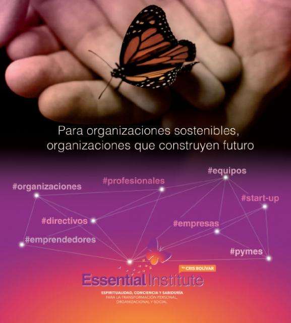 para organiz con manos y mariposa y tipos organiz