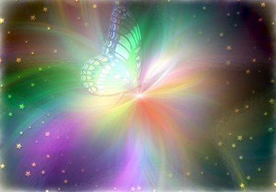 nace luz crisalida