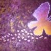 mariposa cb 1200 pix thumbnail