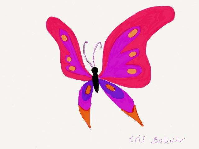 mariposa cris 1