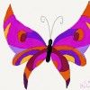 mariposa cris 2 thumbnail