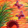 sol y mariposas 2 thumbnail