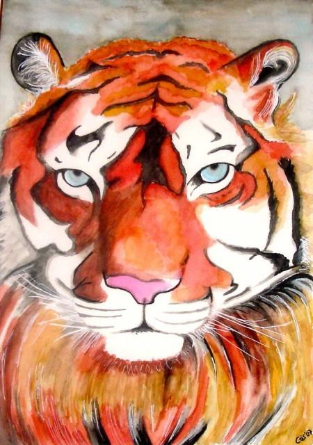 tigre 2 2-12-07