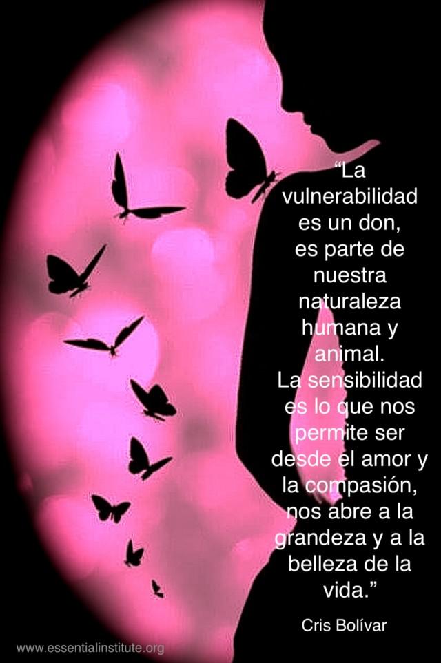 vulnerabilidad by CB