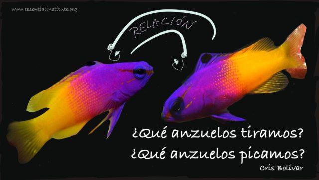 relacion peces texto by cb